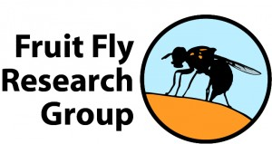 Fruit Fly Research Group Logo